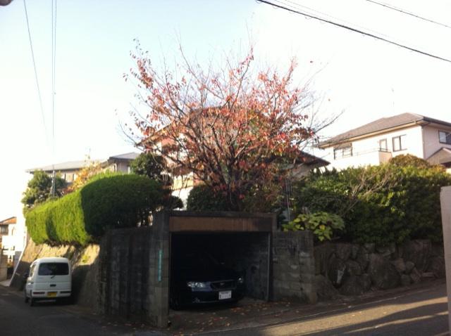 福岡 剪定業者 植木屋