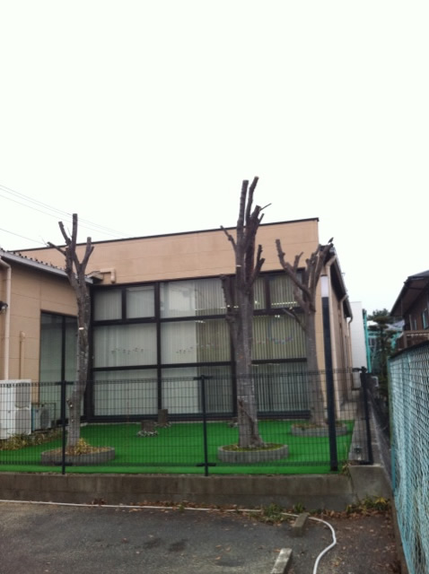 春日市樹木伐採剪定