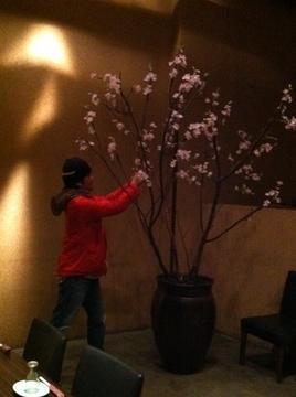 福岡市春の店舗ディスプレイ2